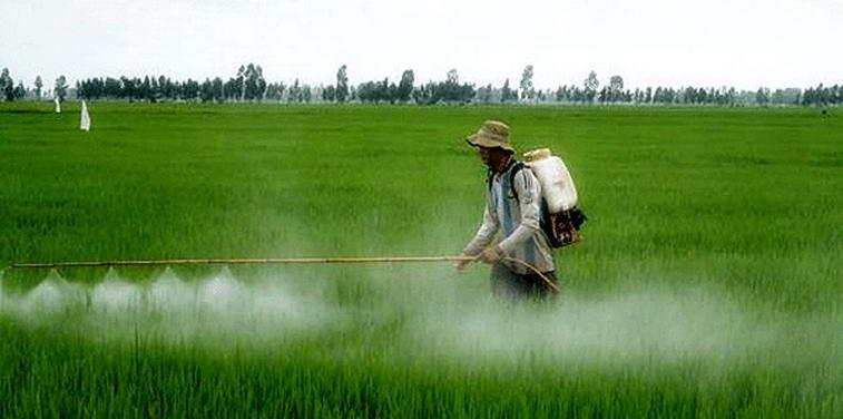 irigatii-agricultura
